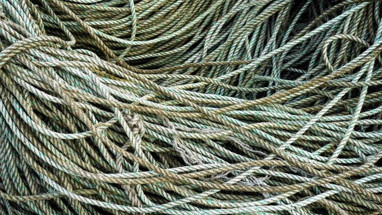 Episode 28 – Business Process Tangles