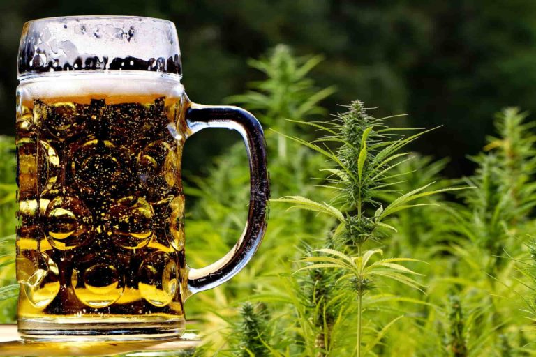 EPISODE 42 – Hemp, Cannabis, Maintenance, OpEx, Chemistry and Beer